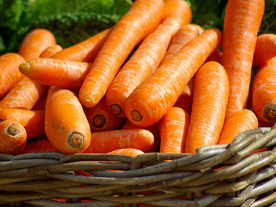 Sunshine Bites for Canine Carrot Lovers!