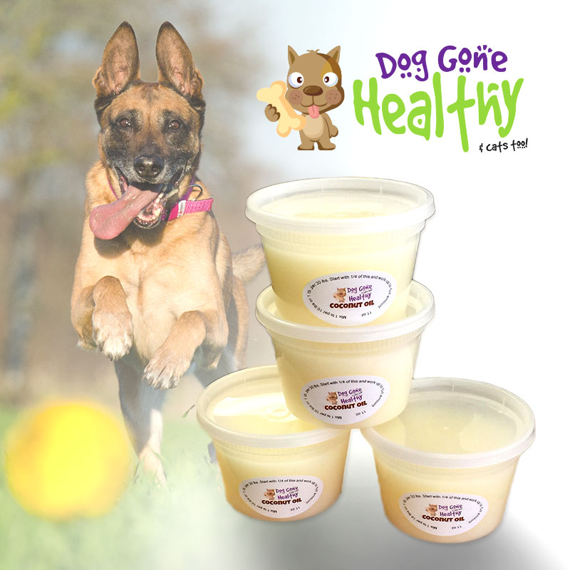Coconut Oil - Dog Gone Healthy